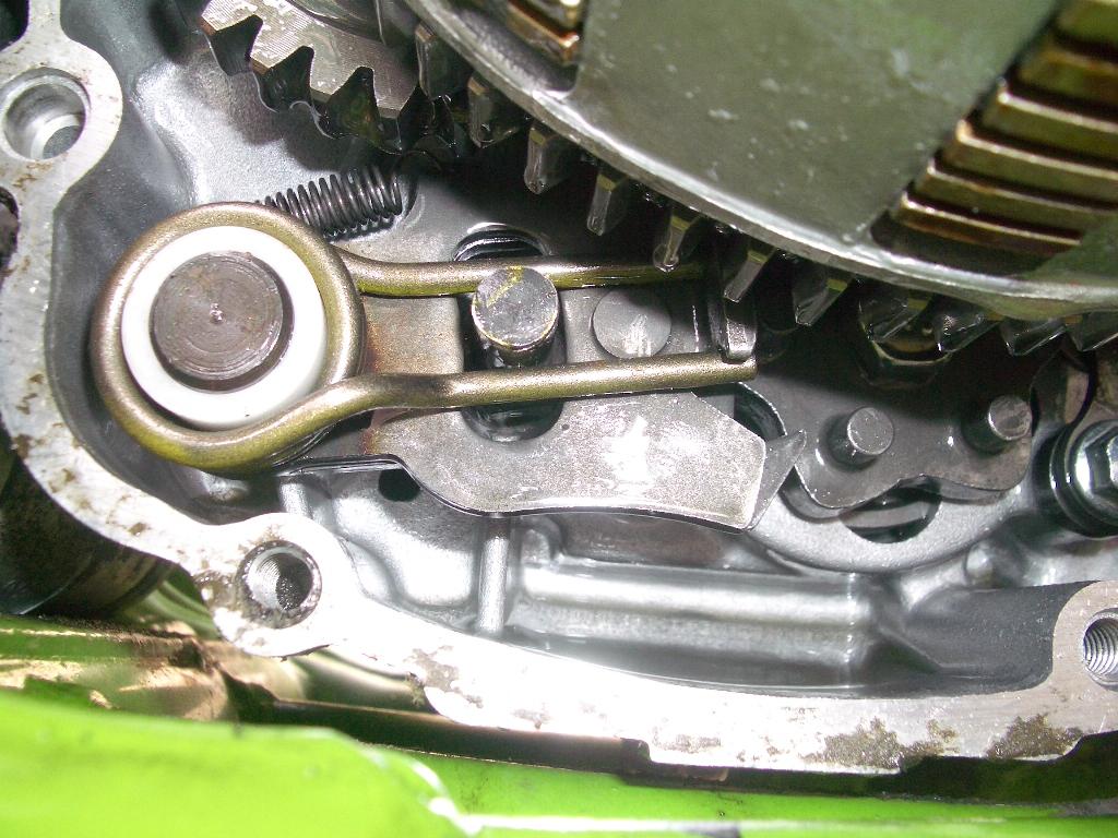IMGP2599