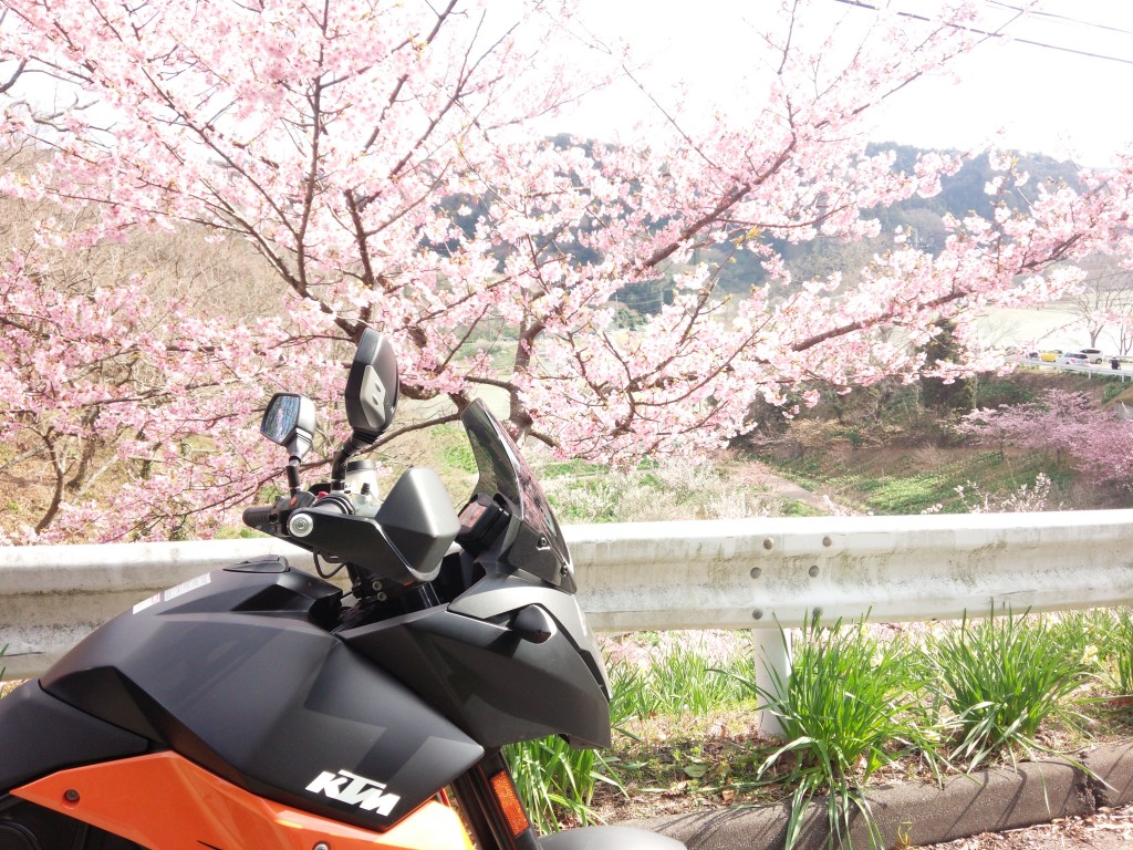 2014-03-04 sakuma_2