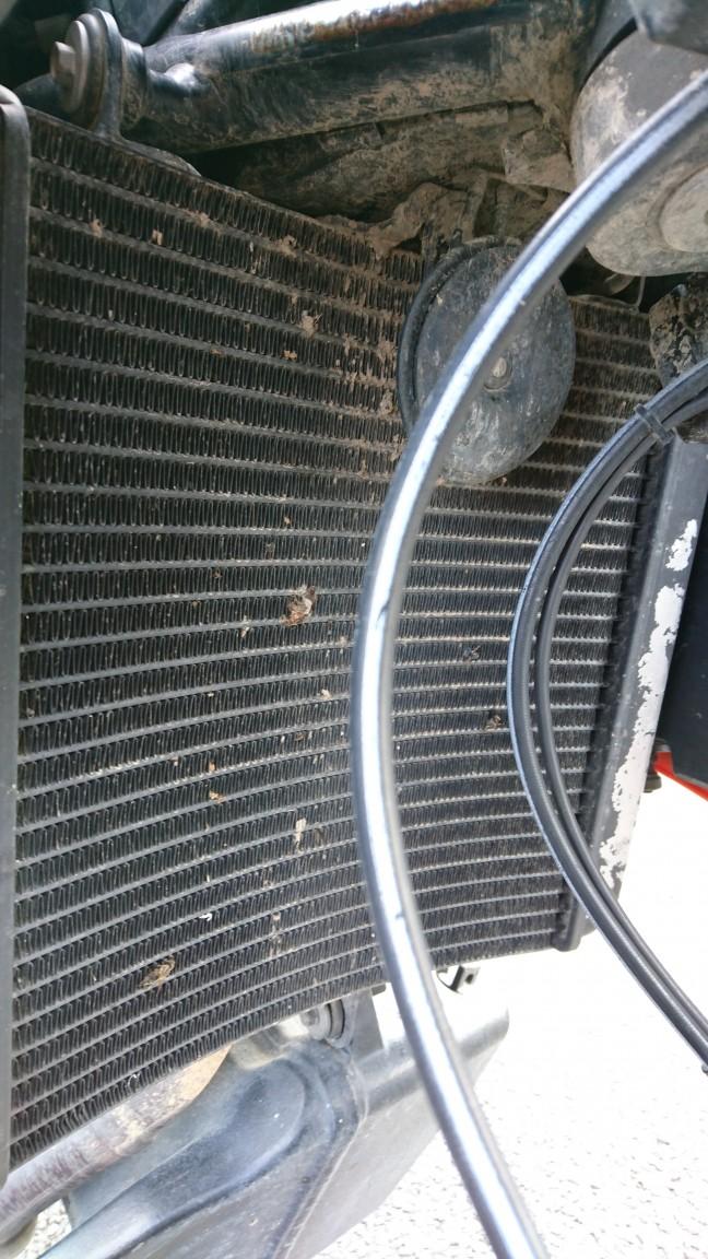 SMT radiator