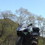Kawasaki Ninja ZX-9R '00